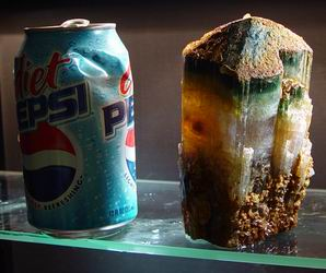 The Pepsi Can